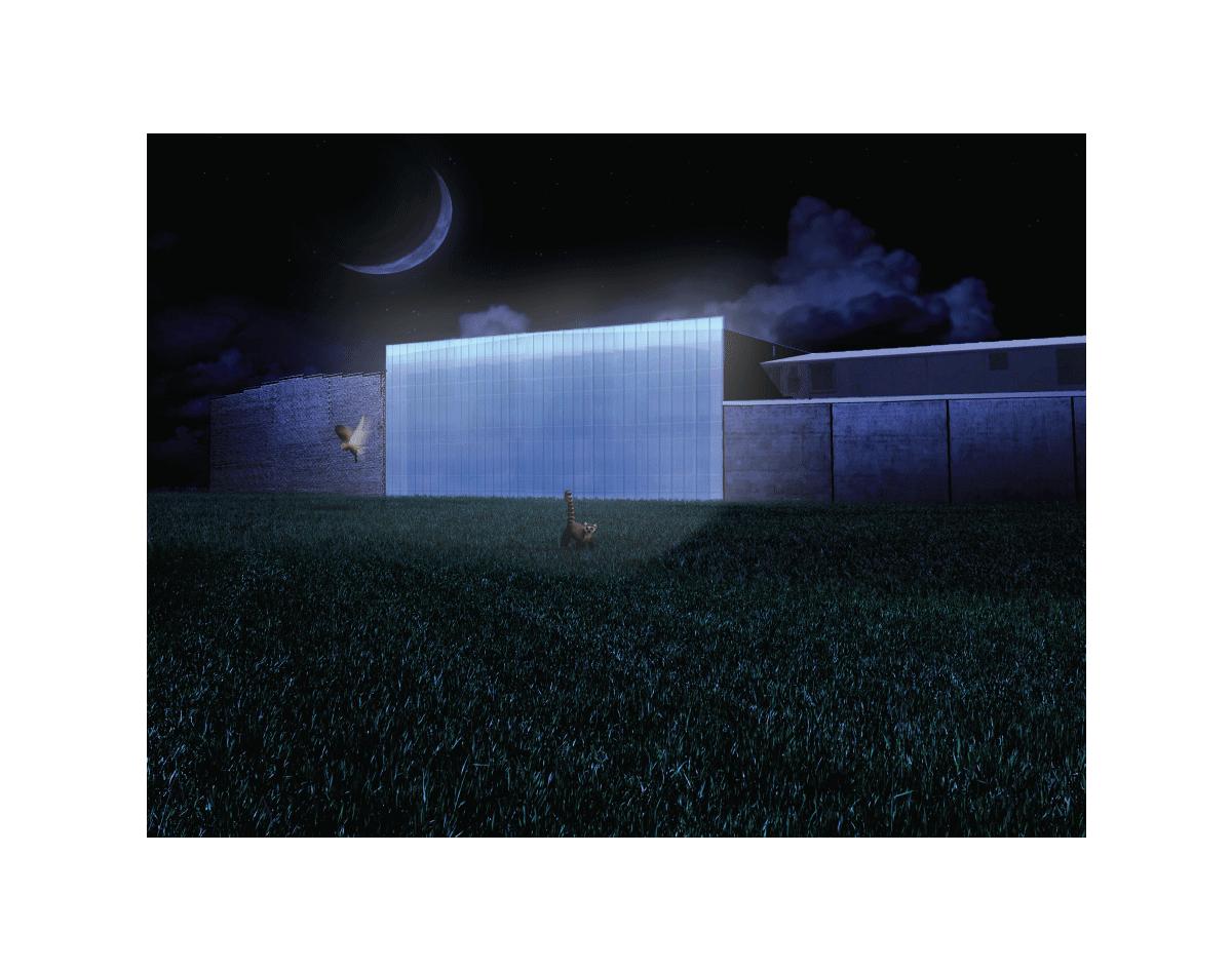 11_noche